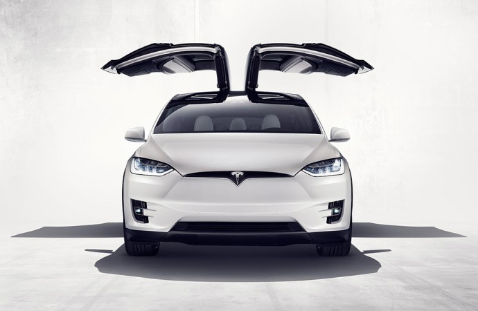Tesla Motors Sues over Falon-Wing Door Failure